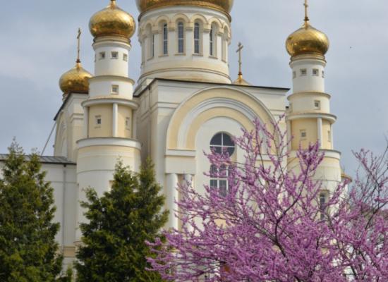 Состоялась рабочая встреча владыки Леонида с министром культуры РСО-А М.Э. Атаевой